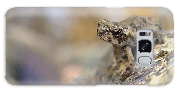 Tiny Frog Galaxy Case