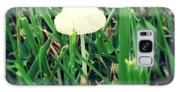 Tiny Mushroom In Grass #mushroom #grass Galaxy Case by Marianna Mills