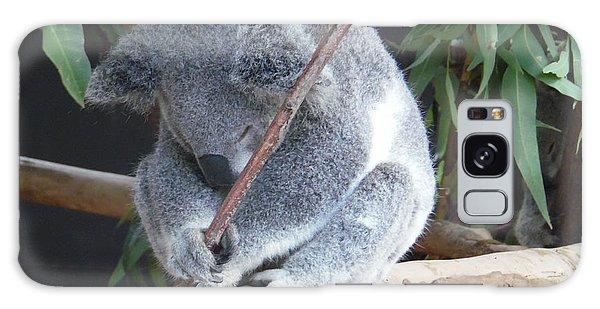 Tired Koala Bear With Stick Galaxy Case