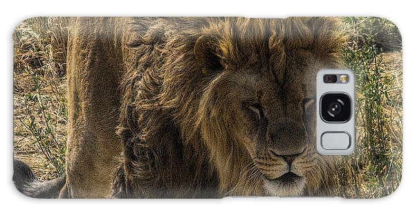 Tired Lion Galaxy Case