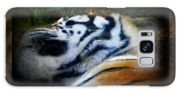 Tired Tiger Galaxy Case