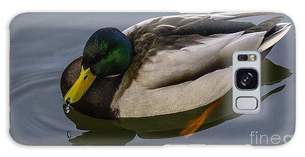 Tivoli Duck Galaxy Case by Michael Canning