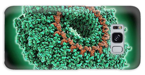 Molecular Biology Galaxy Case - Tobacco Mosaic Virus Coat Protein And Rna by Laguna Design