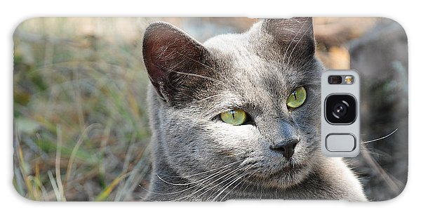 Tom Cat Galaxy Case