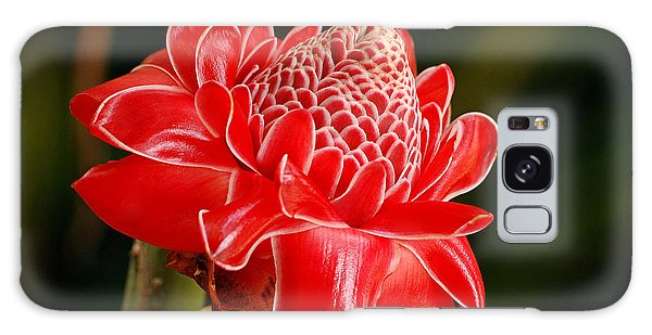Torch Ginger Galaxy Case