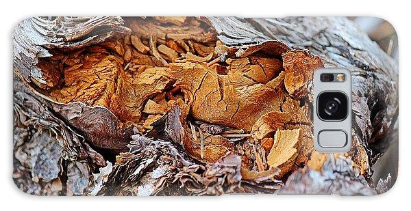 Torn Old Log Galaxy Case