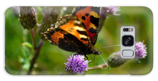 Tortoise Shell Butterfly Galaxy Case