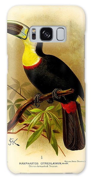 Toucan Galaxy S8 Case - Toucan by Dreyer Wildlife Print Collections