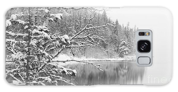 Touch Of Winter Galaxy Case by Diane Bohna