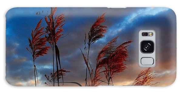 Touched By The Sunset Galaxy Case by Michele Kaiser