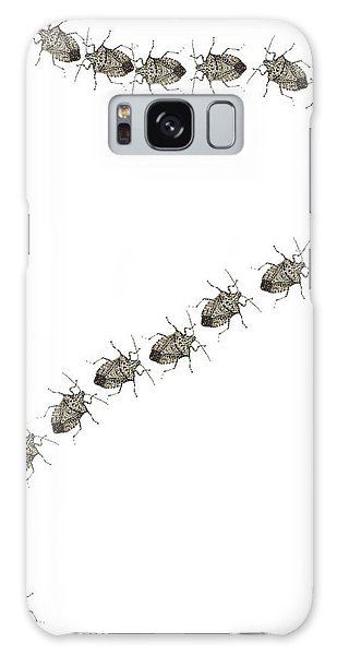 Trail Of Stink Bugs Galaxy Case