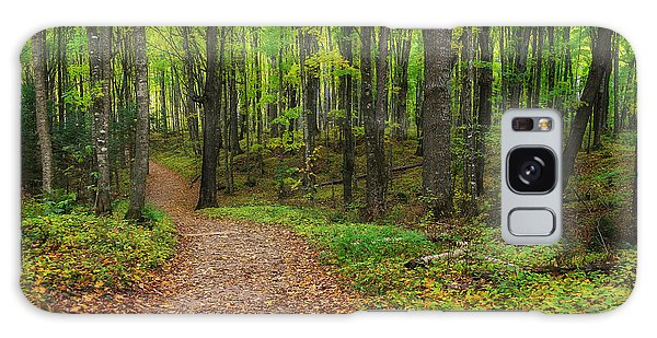 Trail To Miners Falls Galaxy Case