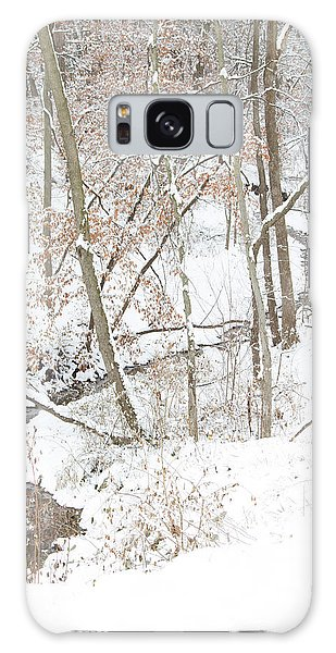 Tranquil Winters Creek Galaxy Case