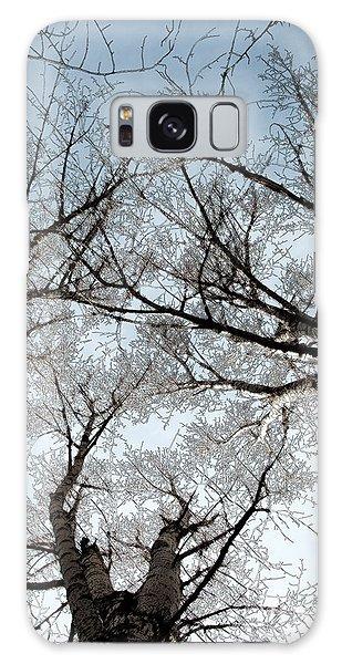 Tree 2 Galaxy Case