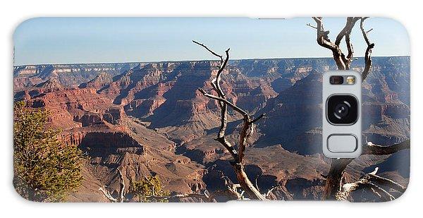 Tree At Grand Canyon Galaxy Case by Robert  Moss