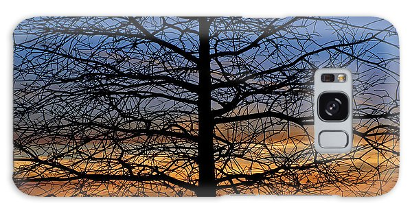Tree At Sunset Galaxy Case by Daniel Woodrum