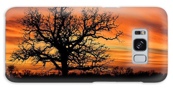 Tree At Sunset Galaxy Case