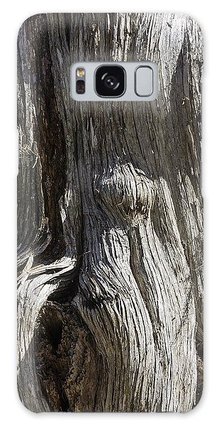 Tree Bark No. 3 Galaxy Case by Lynn Palmer