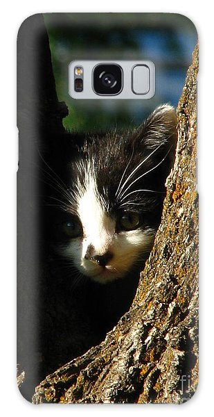 Tree Cat Galaxy Case