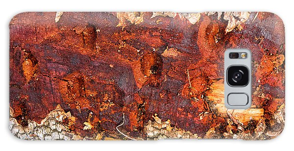 Tree Closeup - Wood Texture Galaxy Case