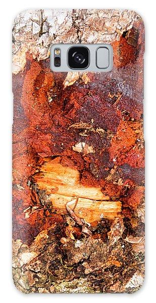 Tree Closeup - Wood Texture Galaxy Case