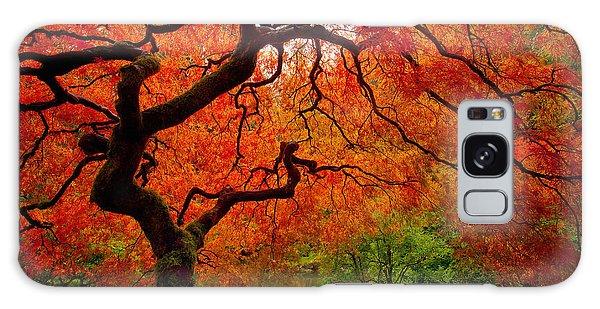 Tree Fire Galaxy Case