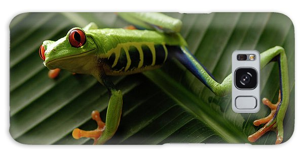 Tree Frog 16 Galaxy Case by Bob Christopher
