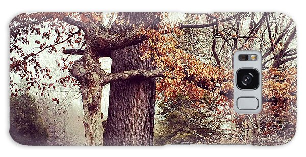Tree Hugging Galaxy Case