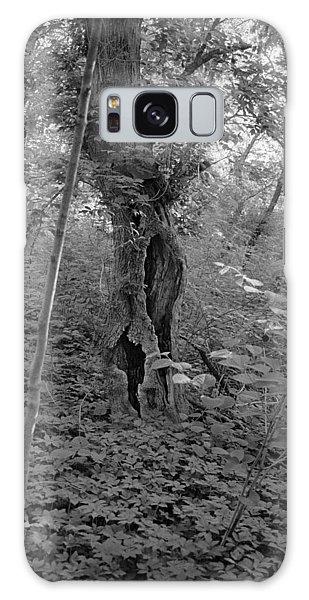 Tree In Elkins Park Galaxy Case by Julie VanDore