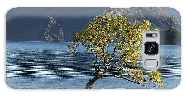 Tree In Lake Wanaka Galaxy Case