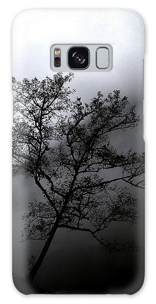 Tree In Mist Galaxy Case