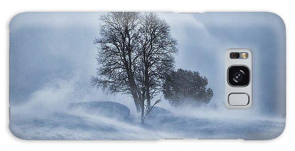 Tree In Snow Blizzard Galaxy Case