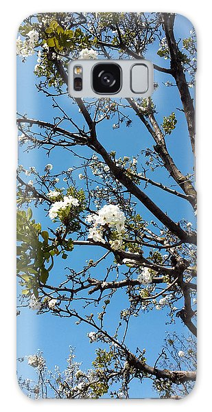 Tree In Spring Galaxy Case