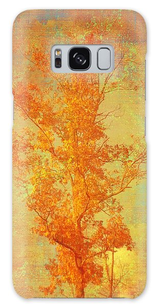 Tree In Sunlight Galaxy Case