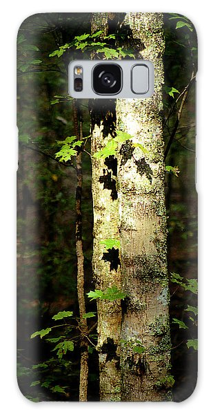 Tree In The Woods Galaxy Case