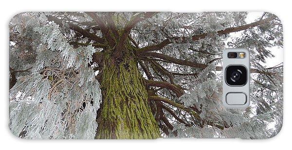 Tree In Winter Galaxy Case by Felicia Tica