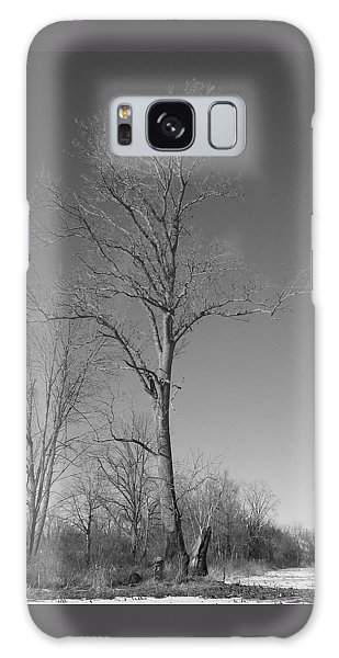 Tree In Winter Galaxy Case