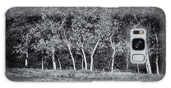 Tree Line In Autumn  Galaxy Case