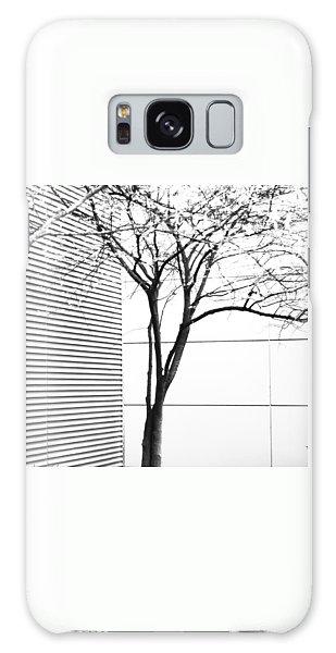 Tree Lines Galaxy Case