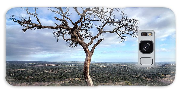 Tree On Enchanted Rock Galaxy Case