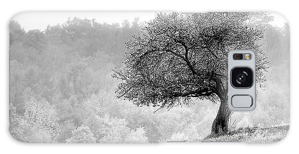 Tree On Marilla Hill Galaxy Case