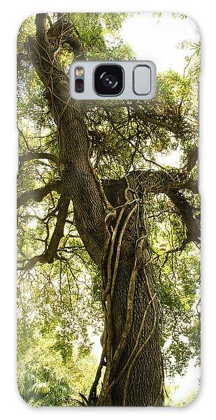 Tree Scape Galaxy Case