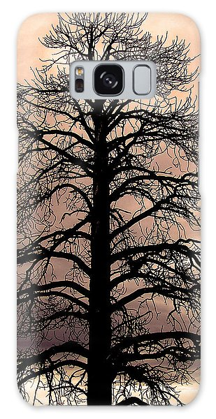 Tree Silhouette Galaxy Case by Laurel Powell