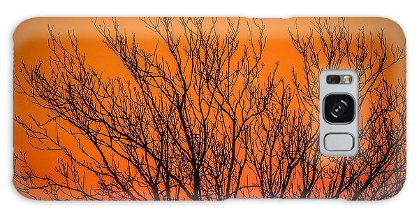 Tree Silhouetted By Irish Sunrise Galaxy Case