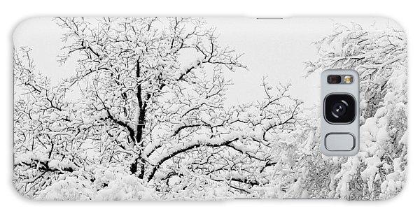 Tree Snow Galaxy Case