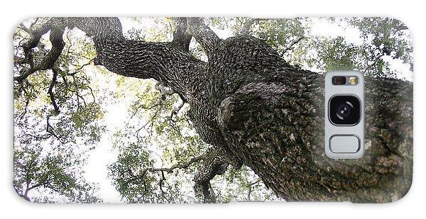 Tree Still Galaxy Case
