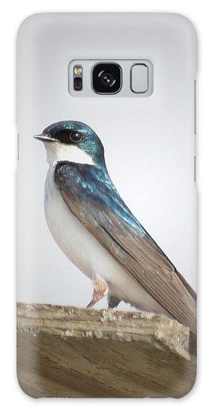 Tree Swallow Portrait Galaxy Case