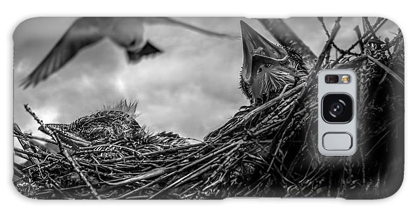 Swallow Galaxy Case - Tree Swallows In Nest by Bob Orsillo