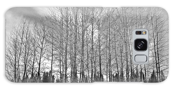 Tree Sweep Galaxy Case