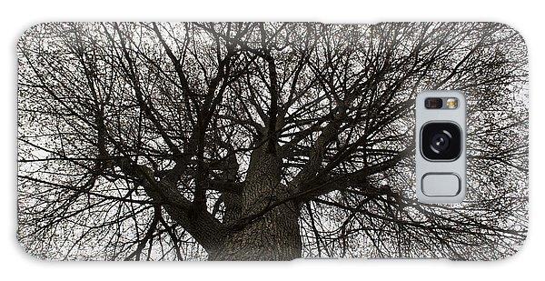 Tree Web Galaxy Case